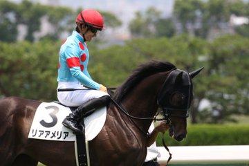 阪神JF2019の競馬予想分析!3つのデータから導く勝ち馬候補