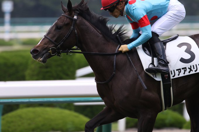 アルテミスS2019の競馬予想分析!3つのデータから導く危険な人気馬