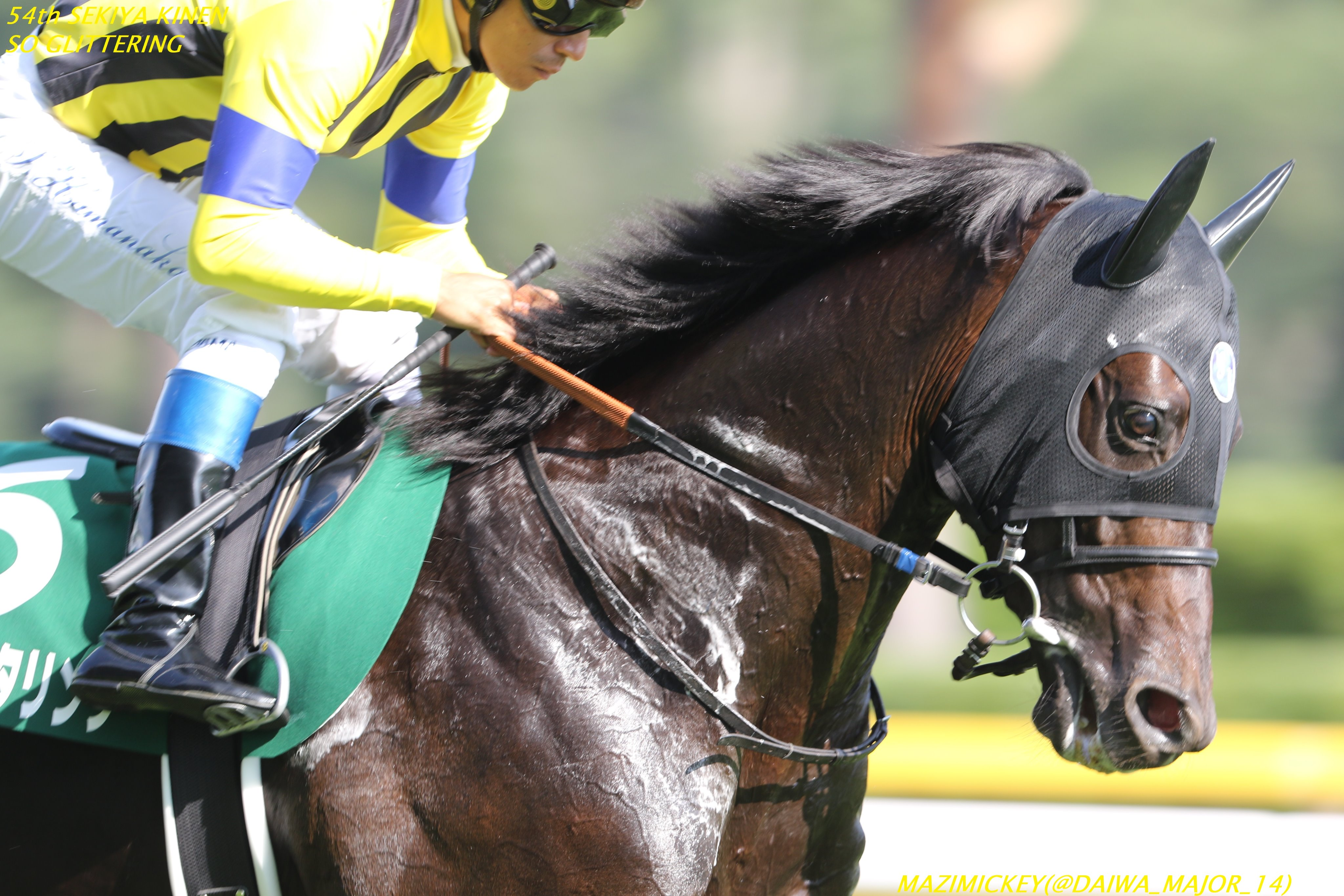 京都金杯2020の競馬予想分析!3つのデータから導く危険な人気馬