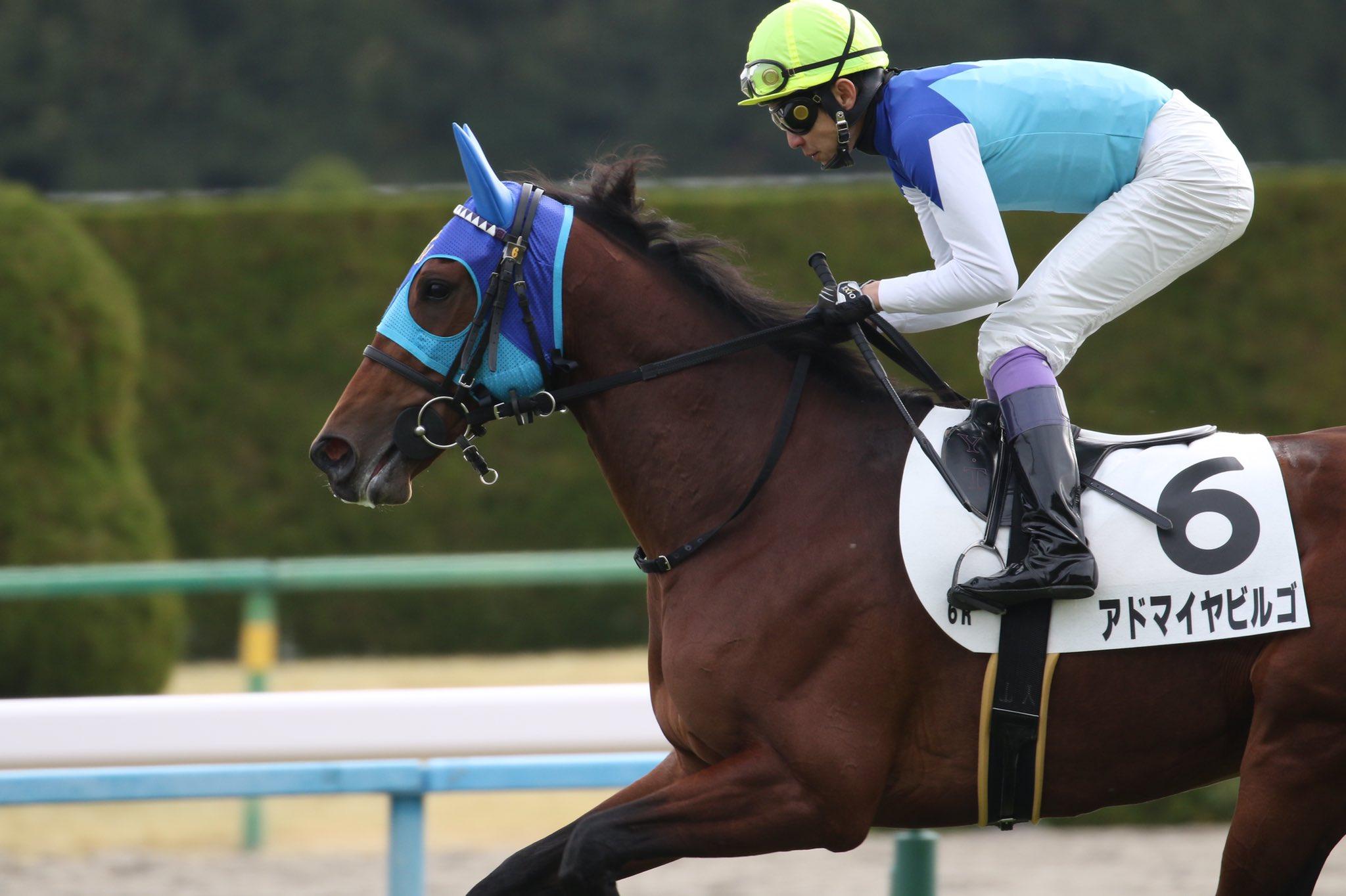 京都新聞杯2020の競馬予想分析!3つのデータから導く危険な人気馬