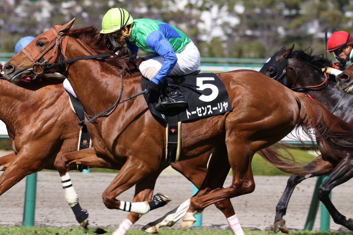 新潟大賞典2021の競馬予想分析!3つのデータから導く危険な人気馬