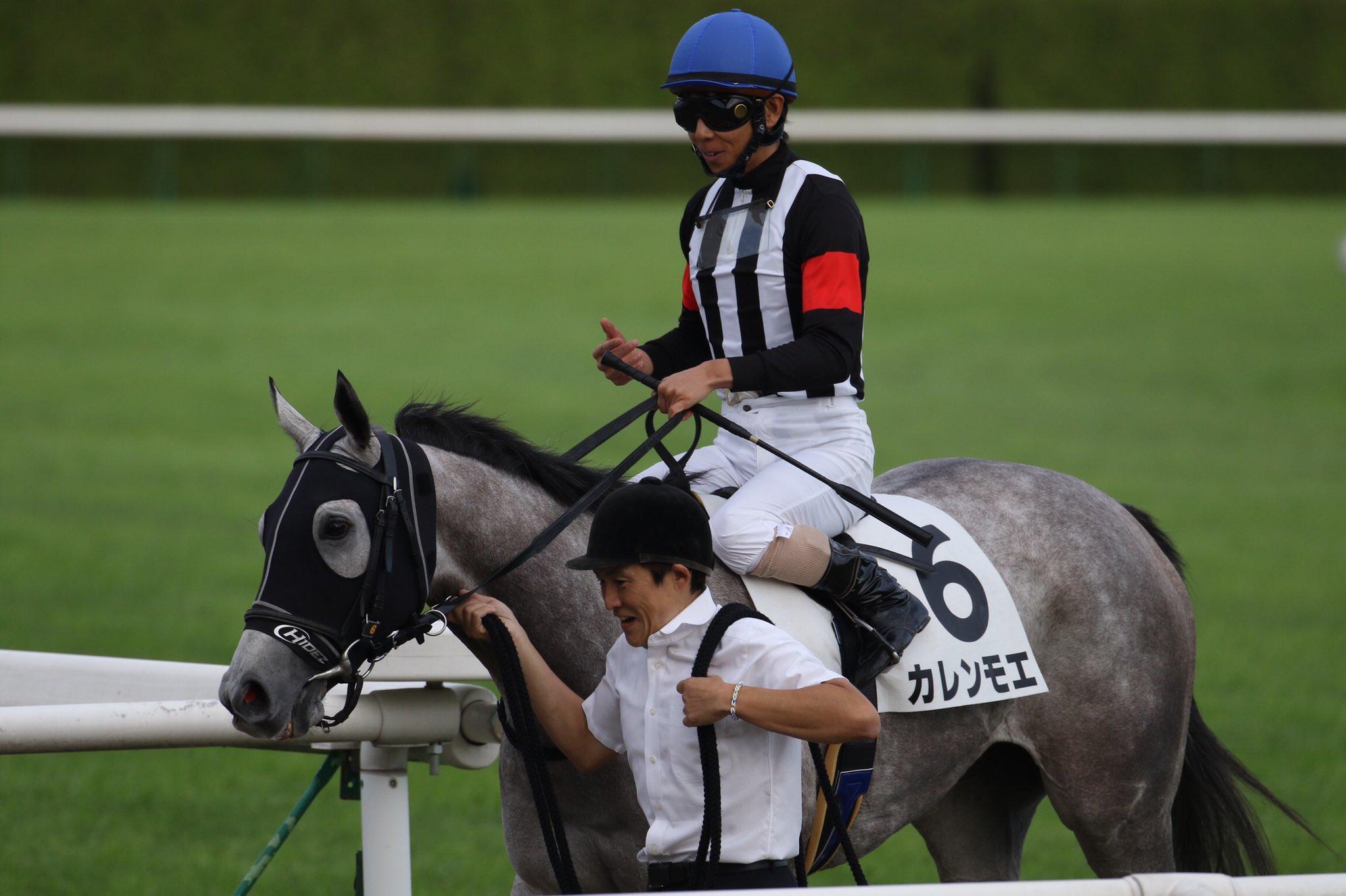 函館SS2021の競馬予想分析!3つのデータから導く危険な人気馬